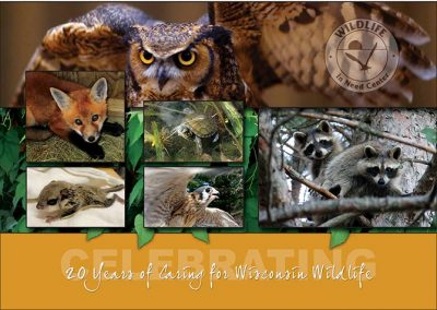 Wild Life In Need Banquet Invite - Outside